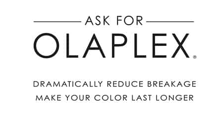 olaplex highlight salon